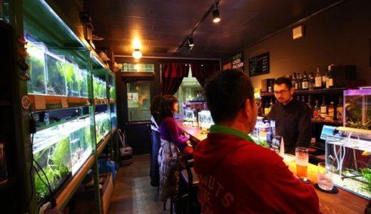 大阪キタの個性的なバー 8選